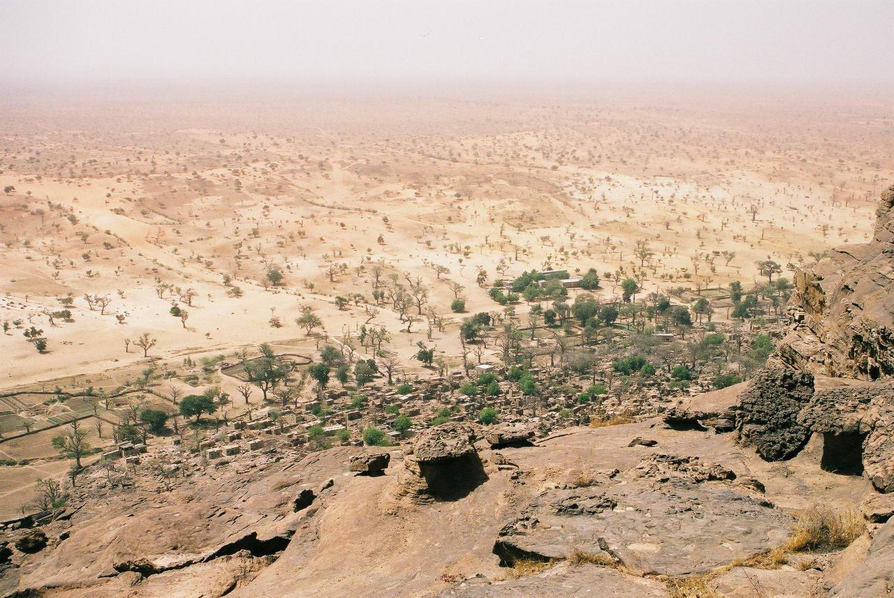 DESERT_SAVANE